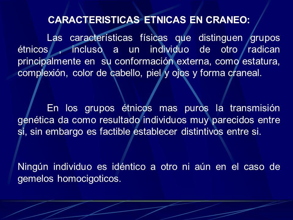 CARACTERISTICAS ETNICAS EN CRANEO: