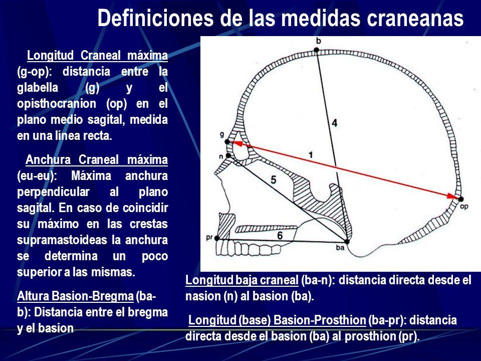 Definiciones de las medidas craneanas