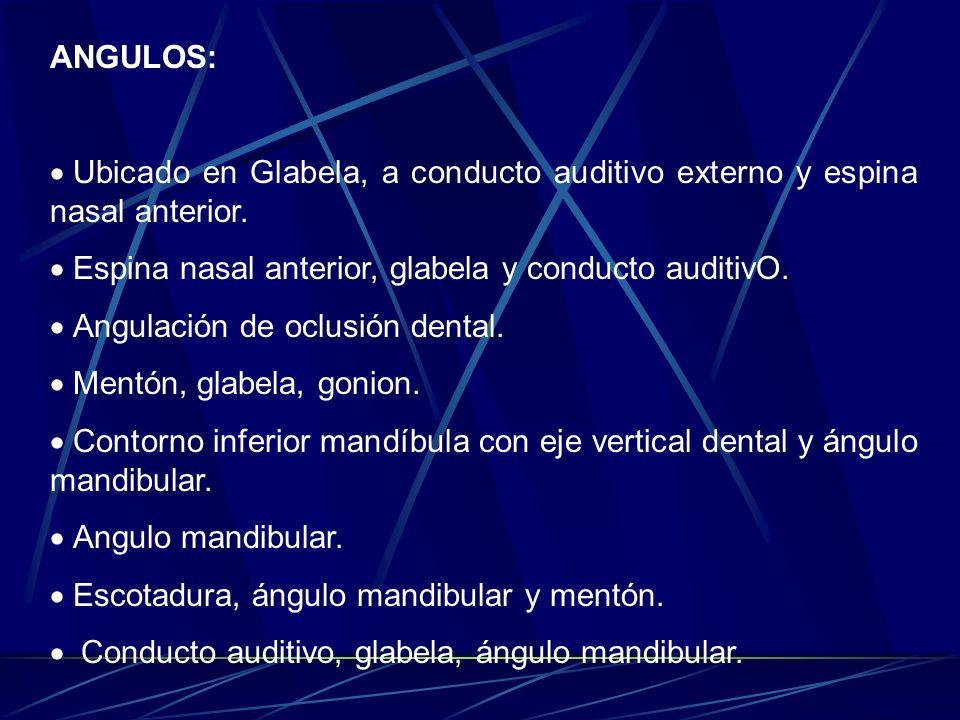 ANGULOS: Ubicado en Glabela, a conducto auditivo externo y espina nasal anterior. Espina nasal anterior, glabela y conducto auditivO.