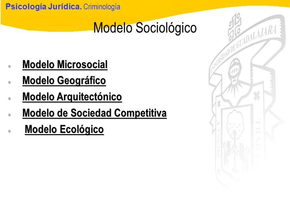 Modelo Sociológico Modelo Microsocial Modelo Geográfico