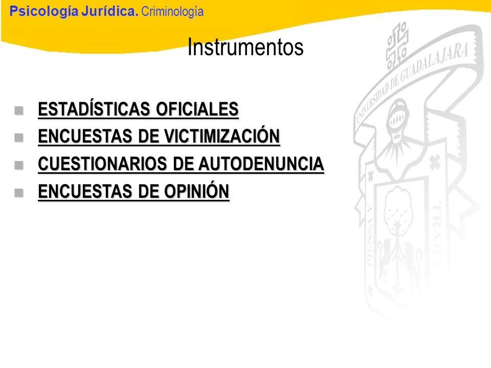 Instrumentos ESTADÍSTICAS OFICIALES ENCUESTAS DE VICTIMIZACIÓN