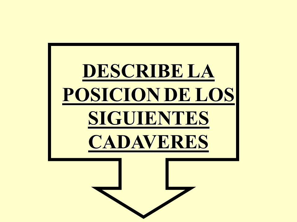 DESCRIBE LA POSICION DE LOS SIGUIENTES CADAVERES