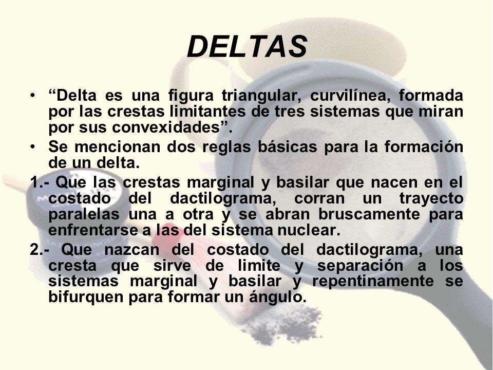 DELTAS Delta es una figura triangular, curvilínea, formada por las crestas limitantes de tres sistemas que miran por sus convexidades .