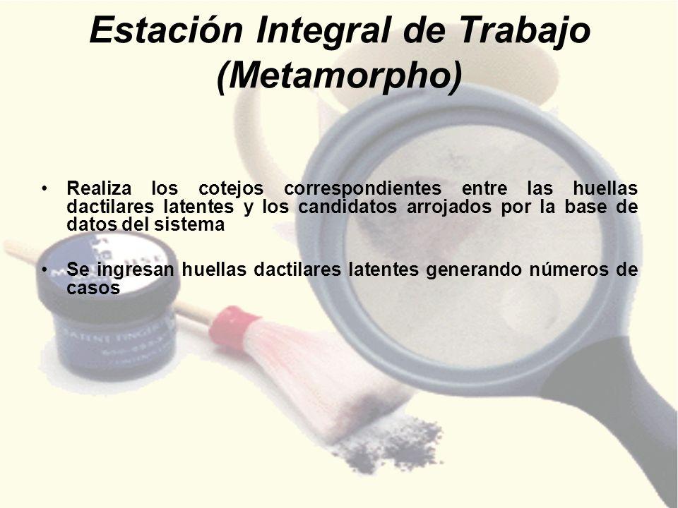 Estación Integral de Trabajo (Metamorpho)