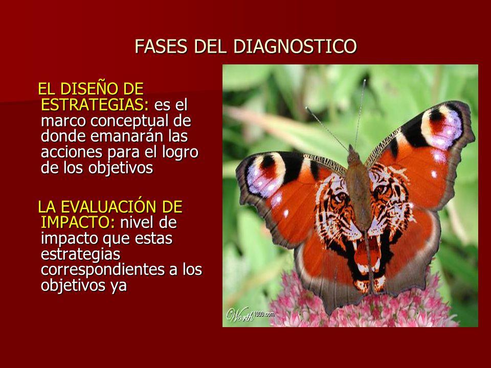 FASES DEL DIAGNOSTICO EL DISEÑO DE ESTRATEGIAS: es el marco conceptual de donde emanarán las acciones para el logro de los objetivos.