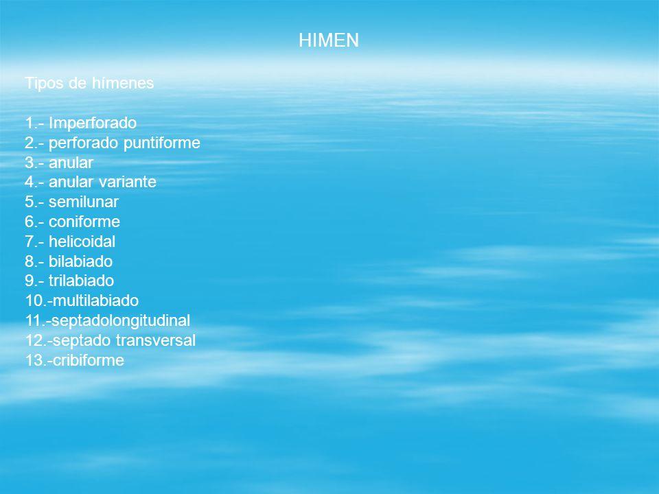 HIMEN Tipos de hímenes 1.- Imperforado 2.- perforado puntiforme
