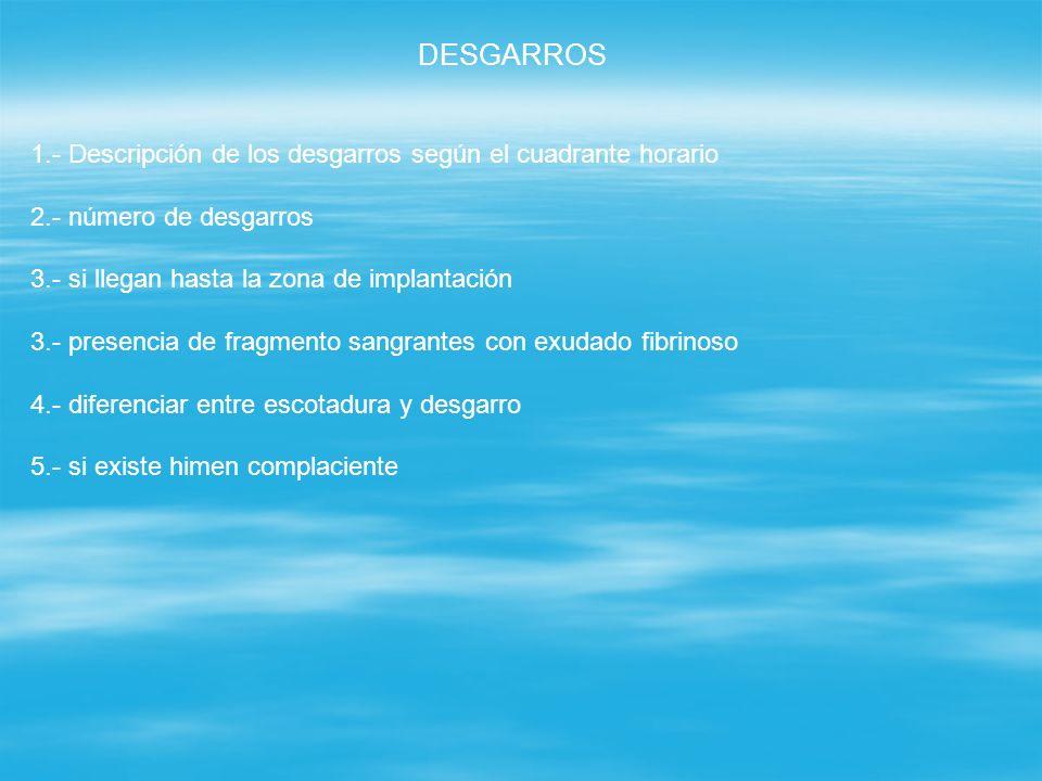 DESGARROS 1.- Descripción de los desgarros según el cuadrante horario