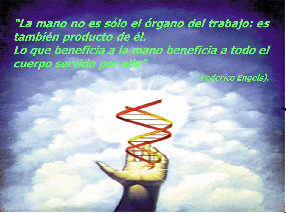 La mano no es sólo el órgano del trabajo: es también producto de él.