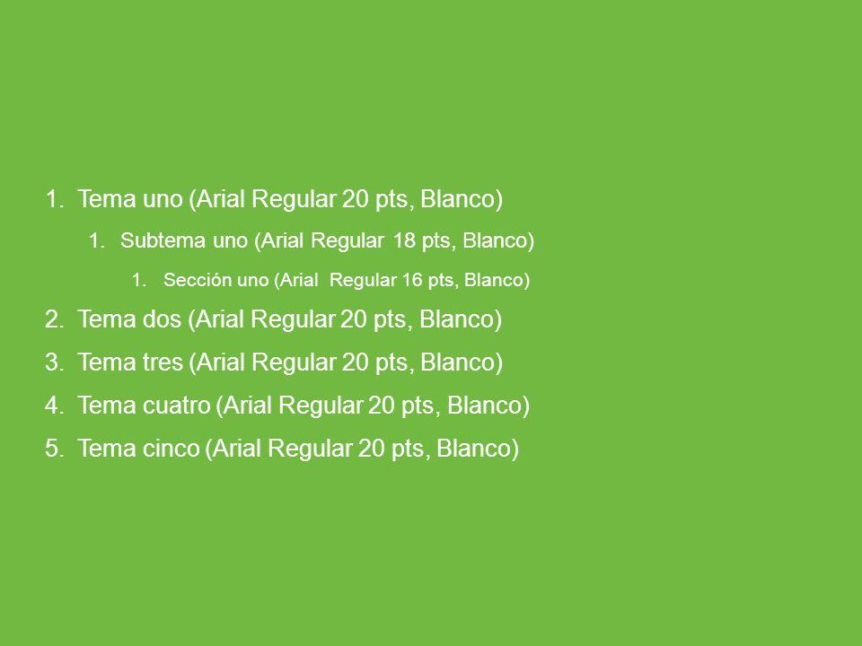 Tema uno (Arial Regular 20 pts, Blanco)