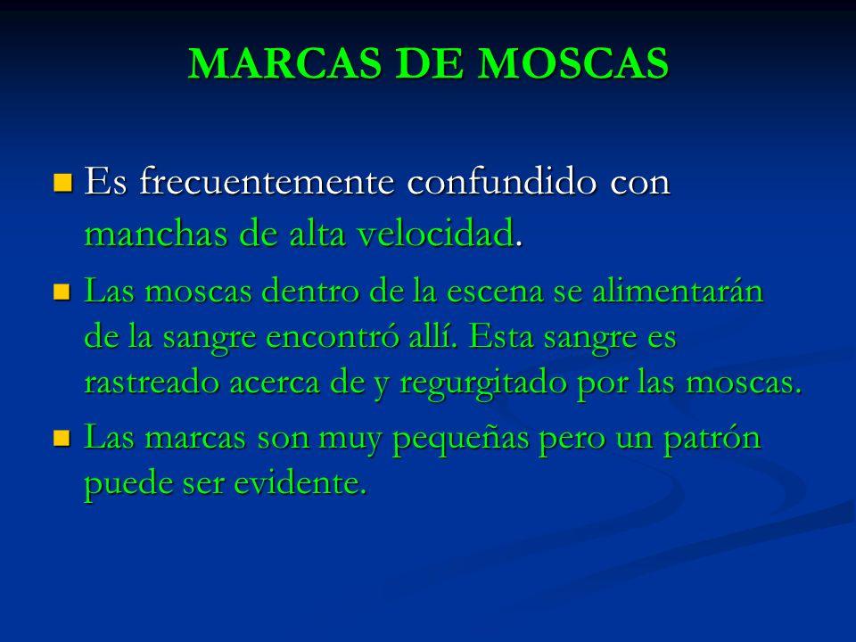 MARCAS DE MOSCAS Es frecuentemente confundido con manchas de alta velocidad.