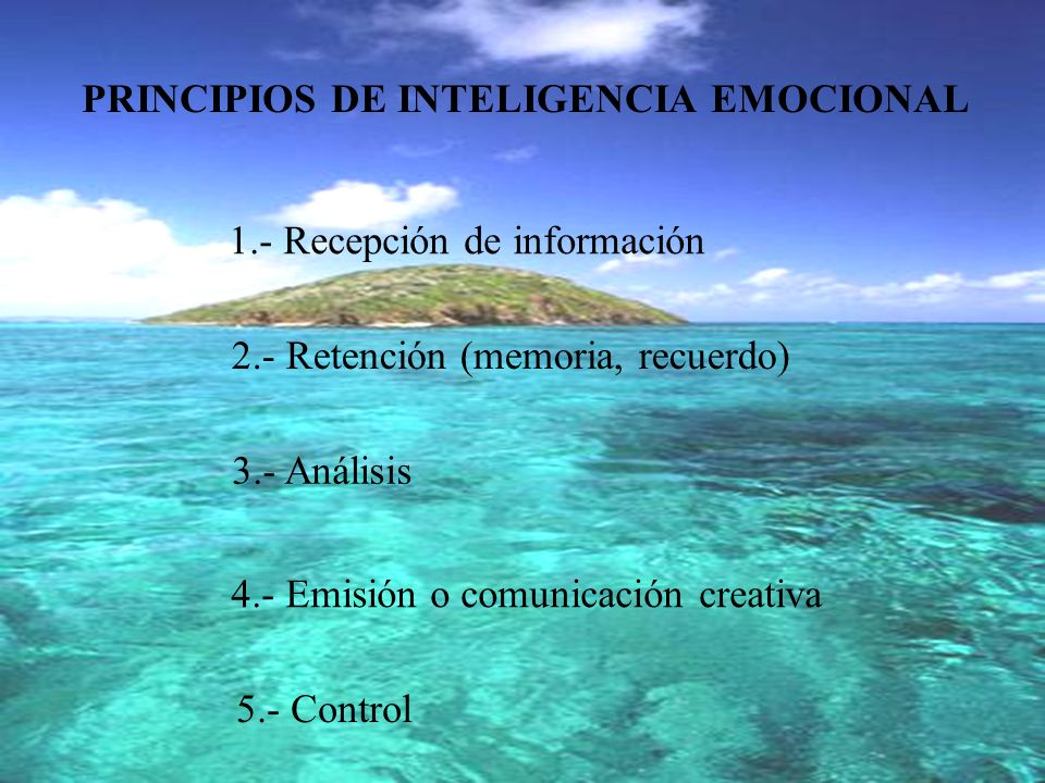 PRINCIPIOS DE INTELIGENCIA EMOCIONAL