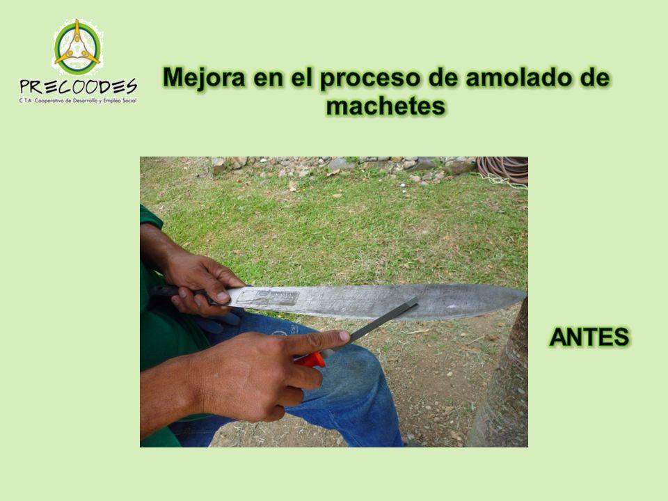 Mejora en el proceso de amolado de machetes