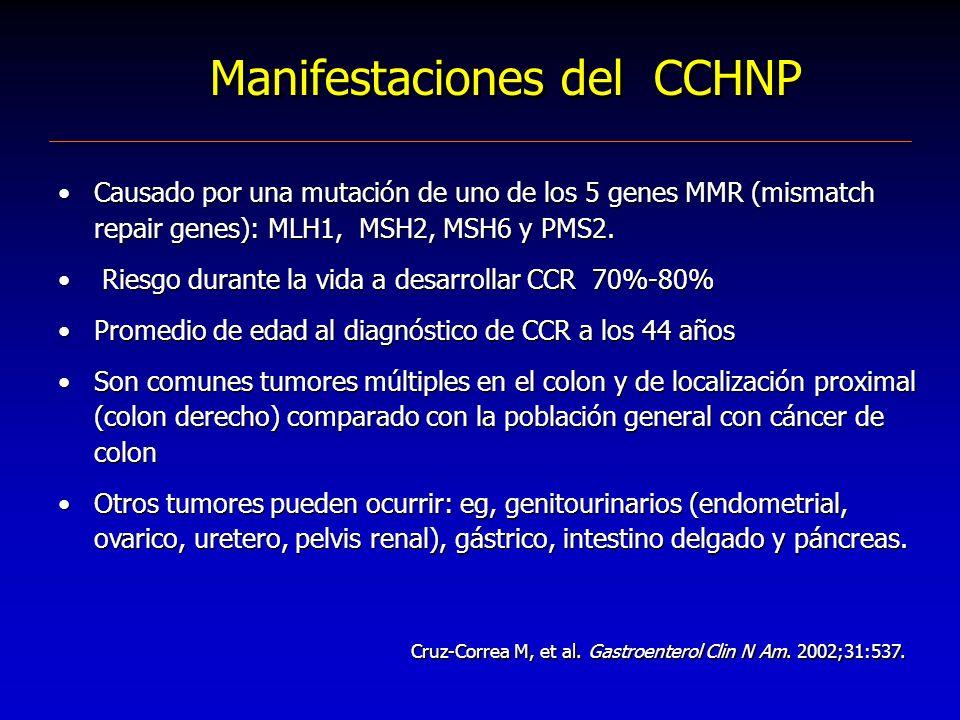 Manifestaciones del CCHNP