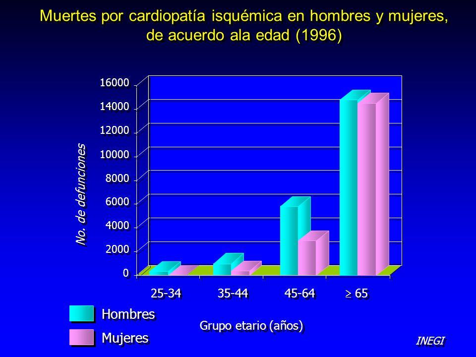 Muertes por cardiopatía isquémica en hombres y mujeres, de acuerdo ala edad (1996)