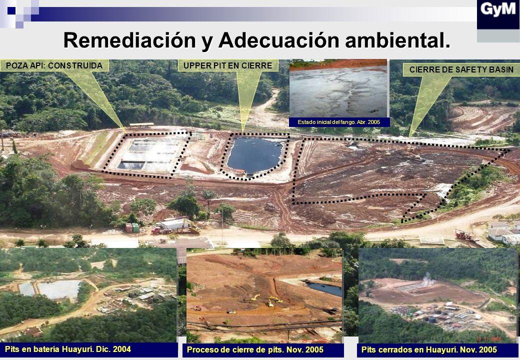 Remediación y Adecuación ambiental.