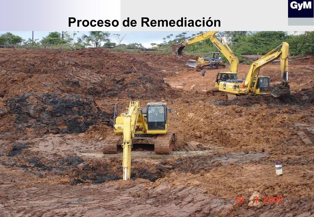 Proceso de Remediación