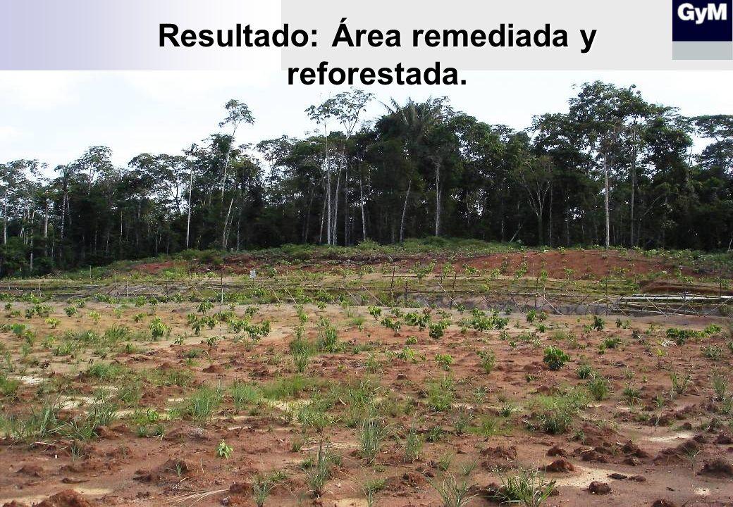 Resultado: Área remediada y reforestada.