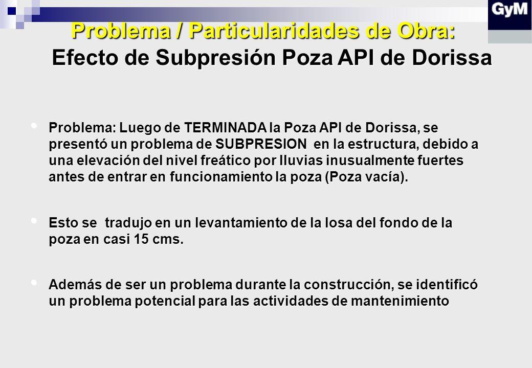 Problema / Particularidades de Obra: Efecto de Subpresión Poza API de Dorissa