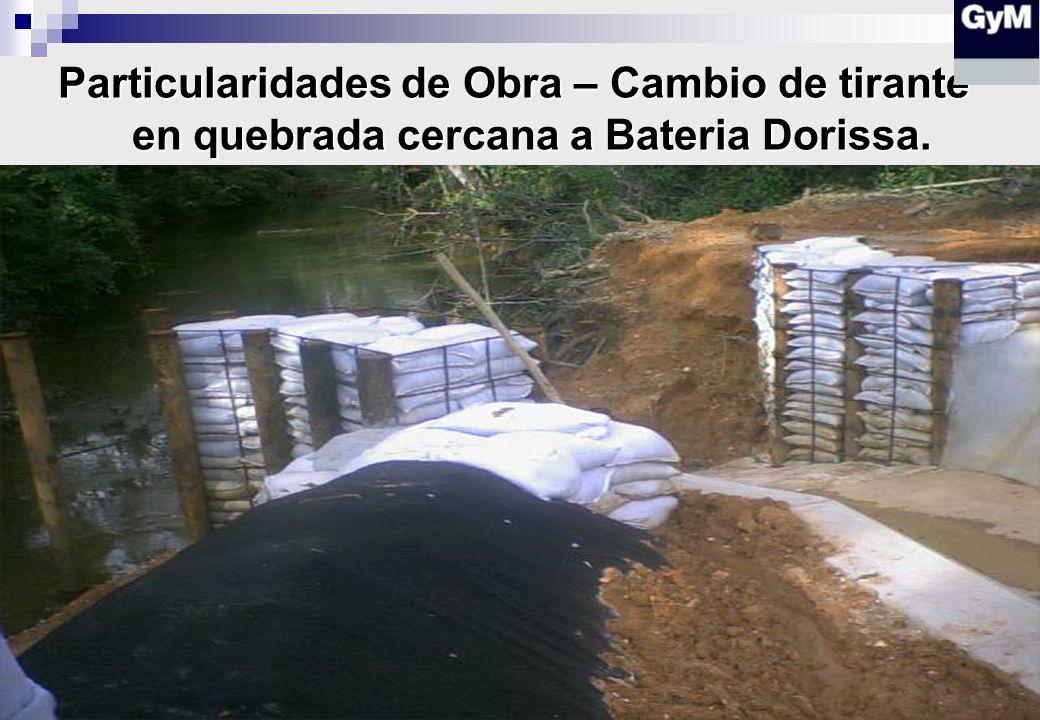 Particularidades de Obra – Cambio de tirante en quebrada cercana a Bateria Dorissa.