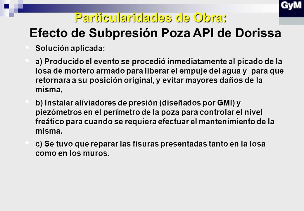 Particularidades de Obra: Efecto de Subpresión Poza API de Dorissa