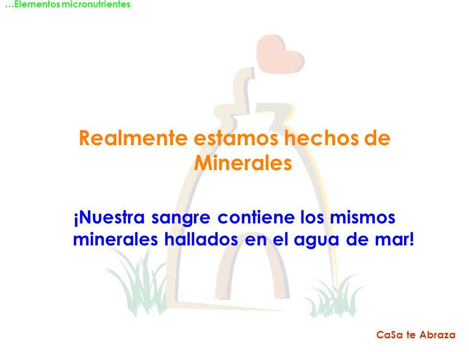 Realmente estamos hechos de Minerales