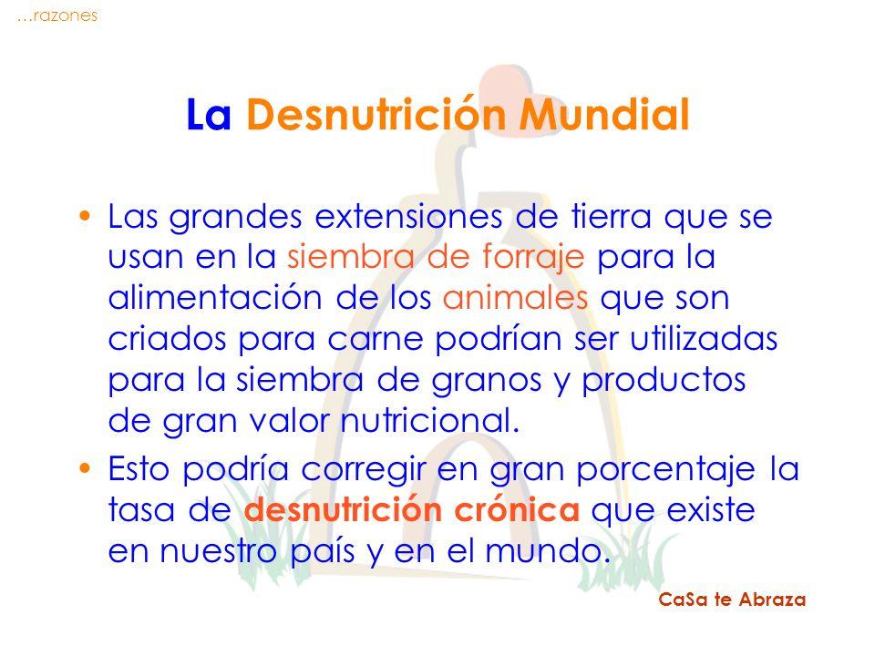 La Desnutrición Mundial
