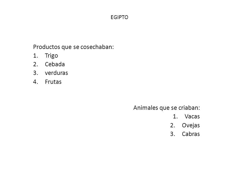 Productos que se cosechaban: Trigo Cebada verduras Frutas