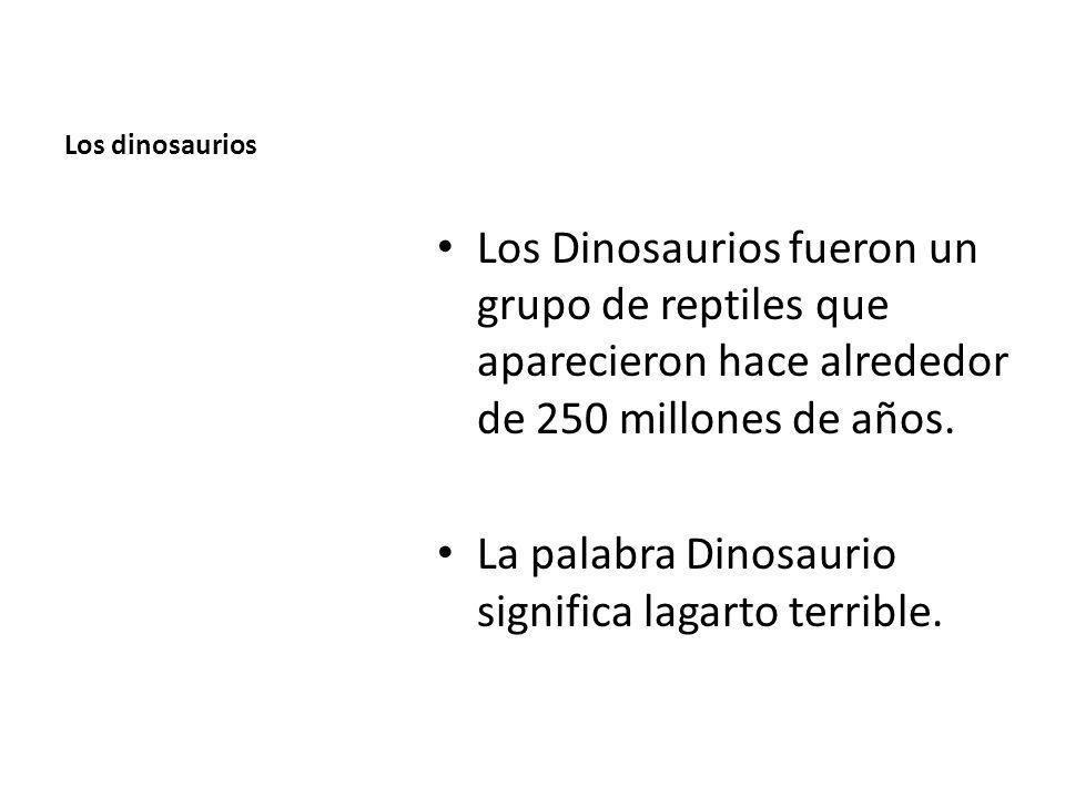 La palabra Dinosaurio significa lagarto terrible.