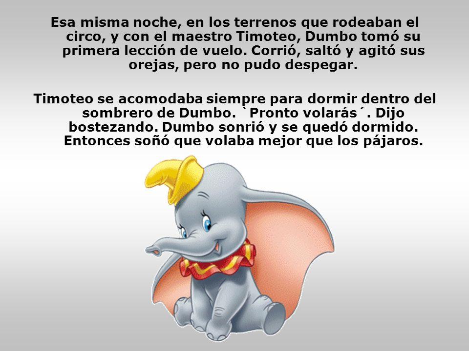 Esa misma noche, en los terrenos que rodeaban el circo, y con el maestro Timoteo, Dumbo tomó su primera lección de vuelo. Corrió, saltó y agitó sus orejas, pero no pudo despegar.