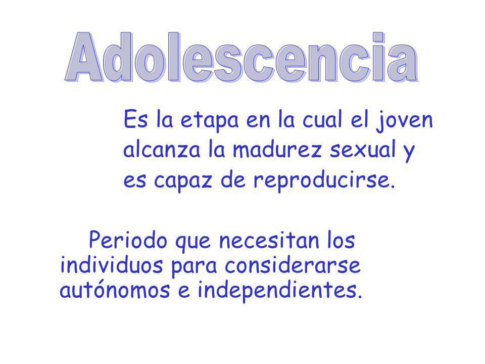 Adolescencia Es la etapa en la cual el joven