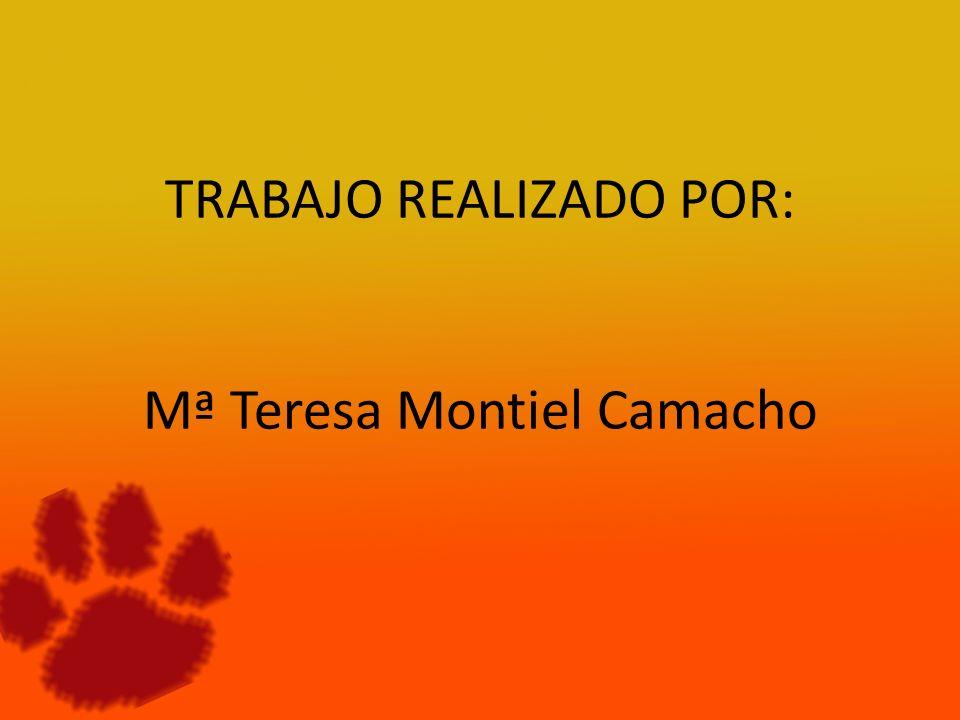 TRABAJO REALIZADO POR: Mª Teresa Montiel Camacho