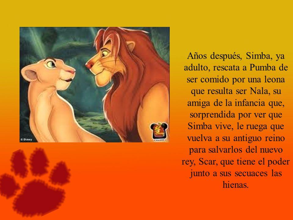 Años después, Simba, ya adulto, rescata a Pumba de ser comido por una leona que resulta ser Nala, su amiga de la infancia que, sorprendida por ver que Simba vive, le ruega que vuelva a su antiguo reino para salvarlos del nuevo rey, Scar, que tiene el poder junto a sus secuaces las hienas.