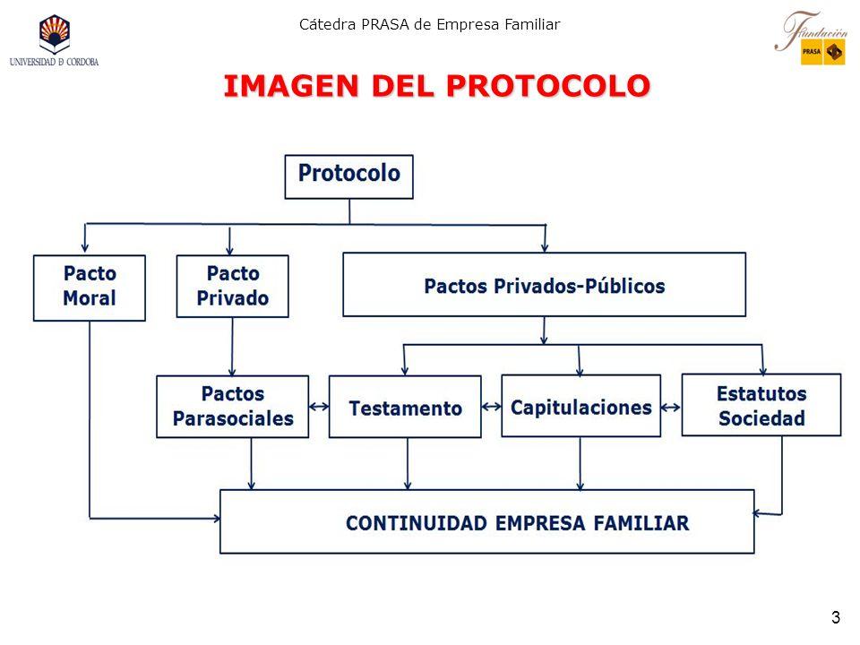 IMAGEN DEL PROTOCOLO