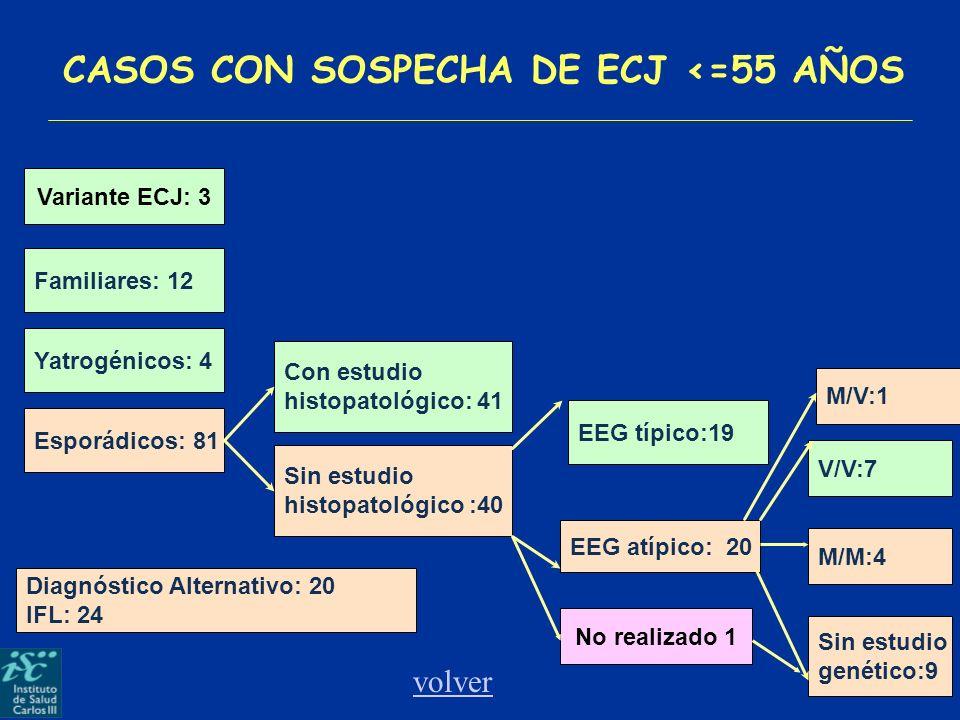 CASOS CON SOSPECHA DE ECJ <=55 AÑOS