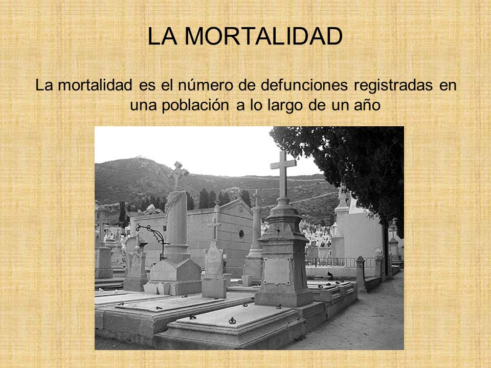 LA MORTALIDAD La mortalidad es el número de defunciones registradas en una población a lo largo de un año.