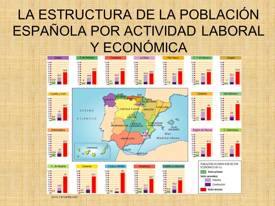 LA ESTRUCTURA DE LA POBLACIÓN ESPAÑOLA POR ACTIVIDAD LABORAL Y ECONÓMICA
