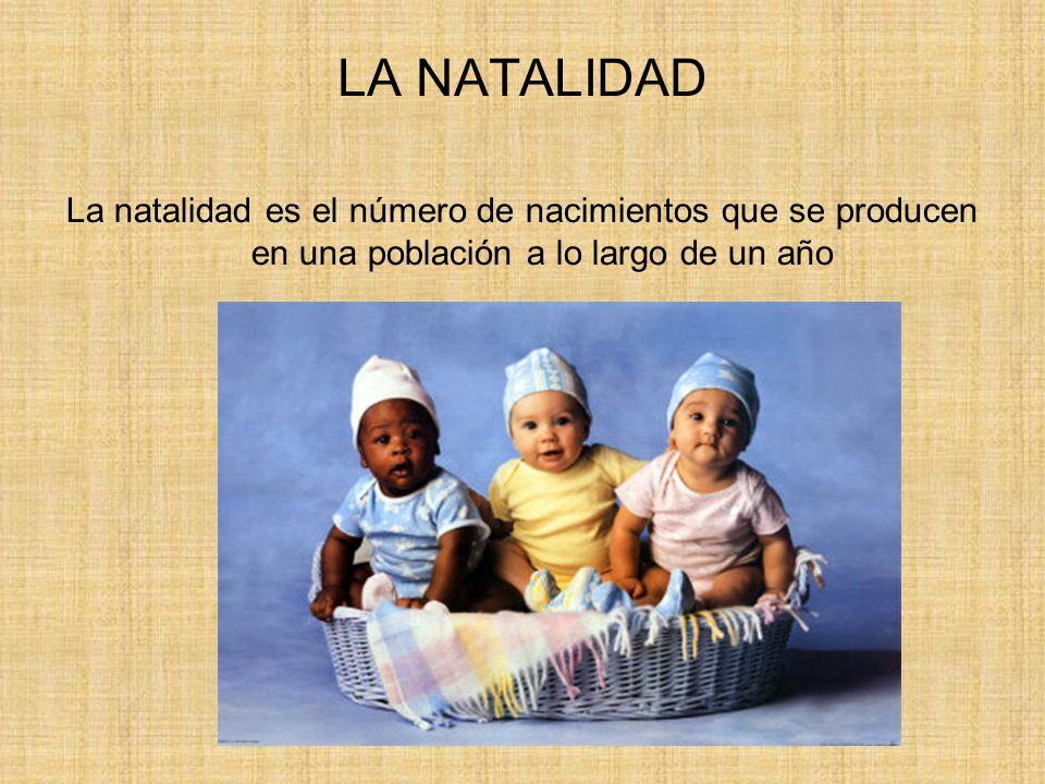 LA NATALIDAD La natalidad es el número de nacimientos que se producen en una población a lo largo de un año.