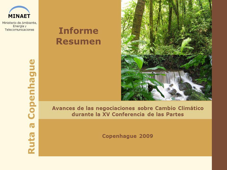 Informe Resumen Avances de las negociaciones sobre Cambio Climático durante la XV Conferencia de las Partes.