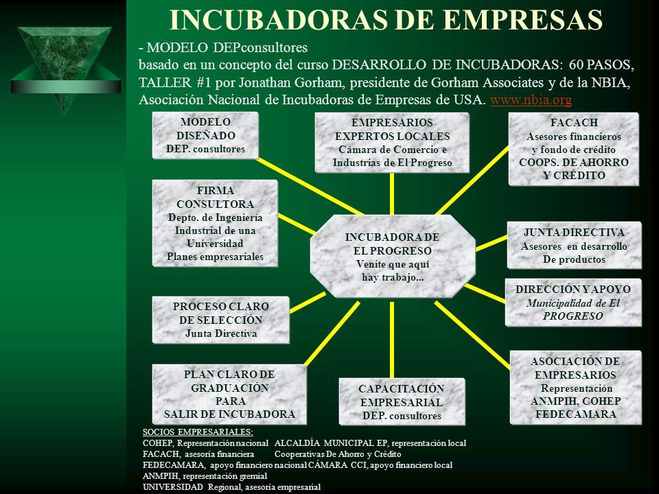 INCUBADORAS DE EMPRESAS