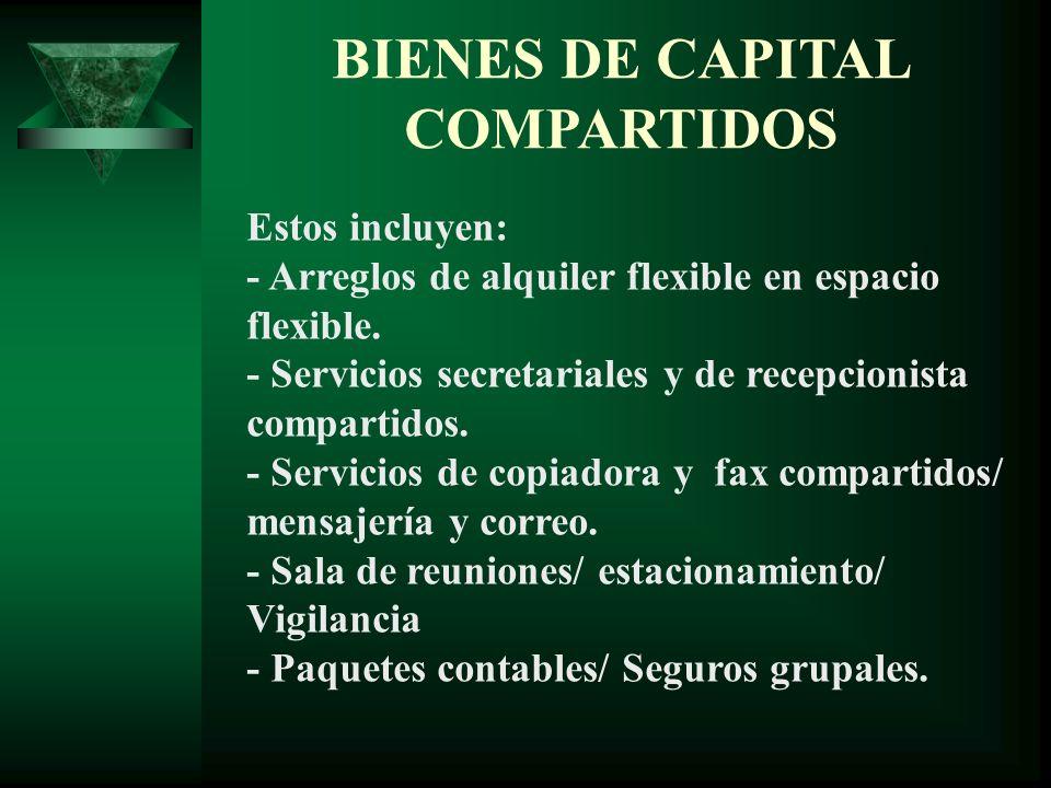 BIENES DE CAPITAL COMPARTIDOS