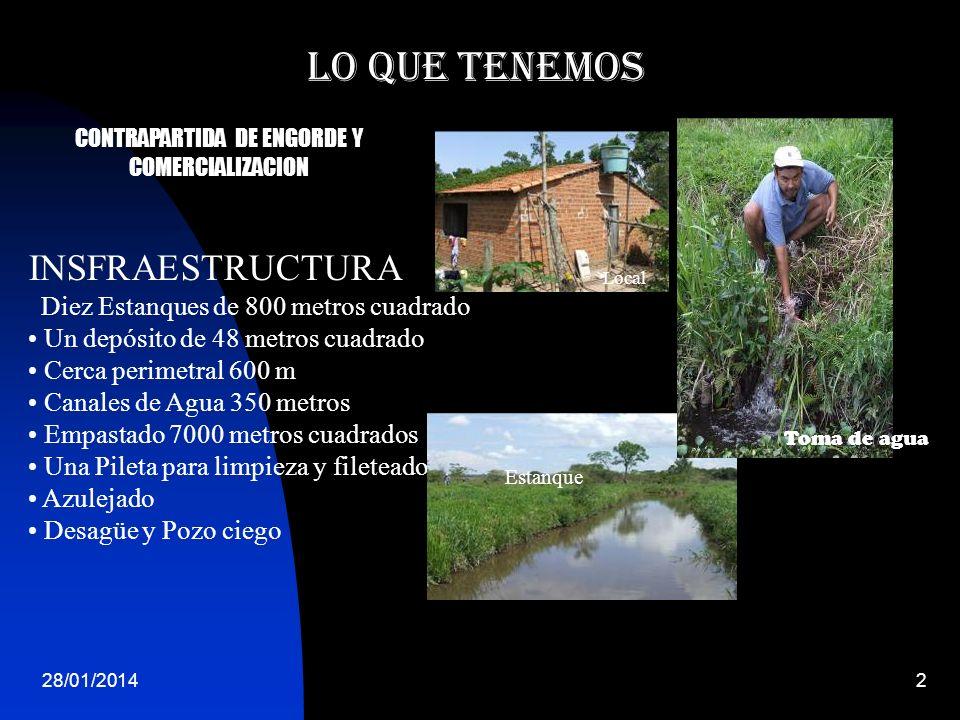 CONTRAPARTIDA DE ENGORDE Y COMERCIALIZACION
