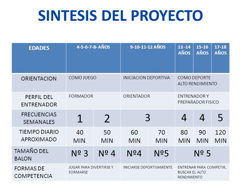 SINTESIS DEL PROYECTO 1 2 3 4 5 Nº 3 Nº 4 Nº4 Nº5 Nº 5 40 MIN. 50 MIN