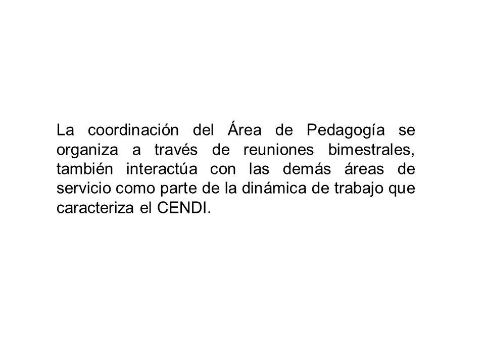 La coordinación del Área de Pedagogía se organiza a través de reuniones bimestrales, también interactúa con las demás áreas de servicio como parte de la dinámica de trabajo que caracteriza el CENDI.