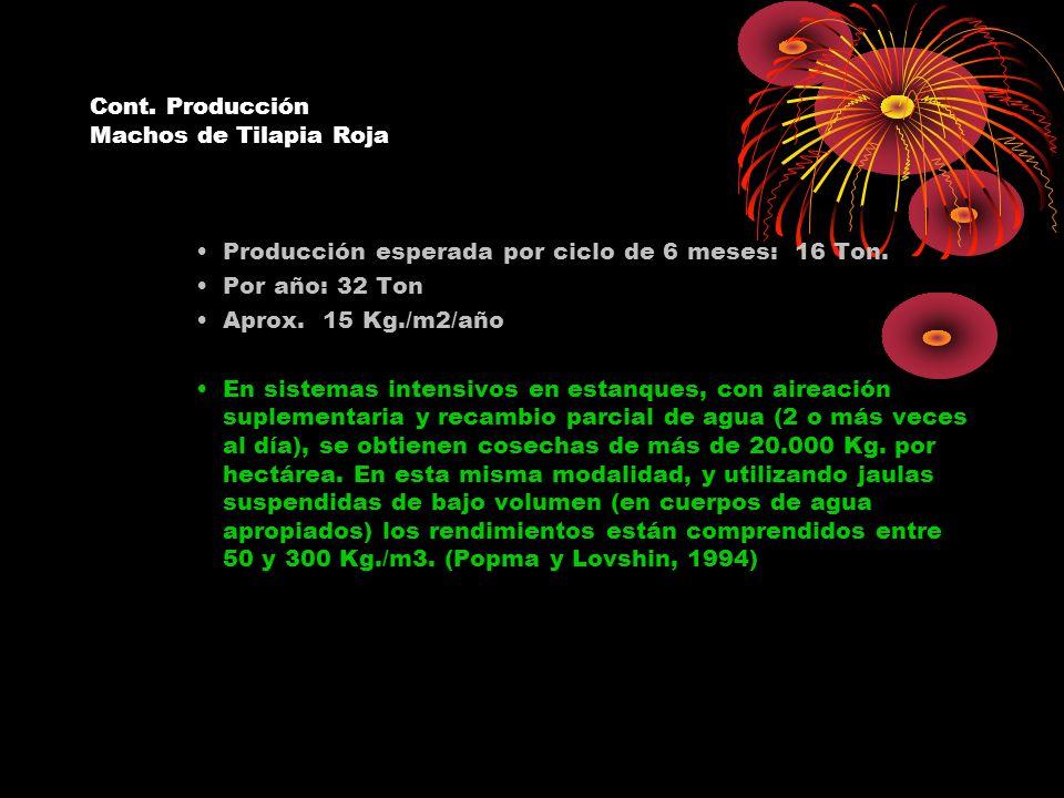 Cont. Producción Machos de Tilapia Roja