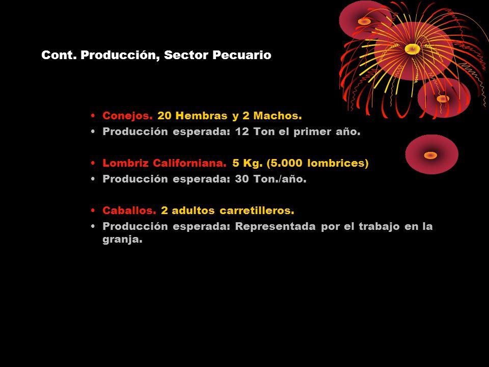 Cont. Producción, Sector Pecuario