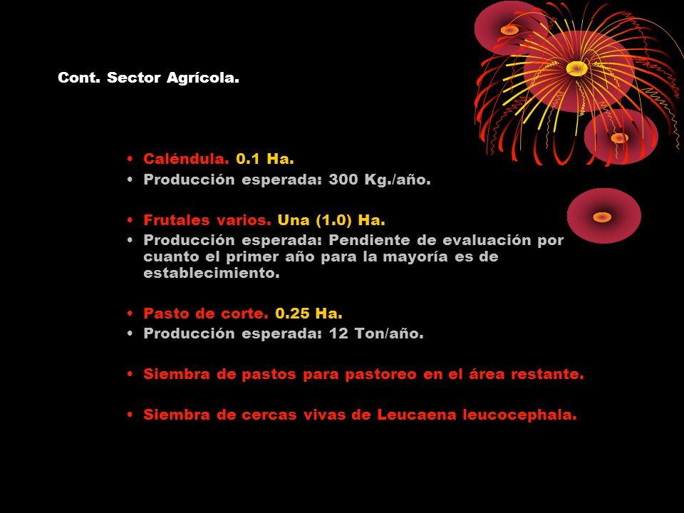 Cont. Sector Agrícola. Caléndula. 0.1 Ha. Producción esperada: 300 Kg./año. Frutales varios. Una (1.0) Ha.