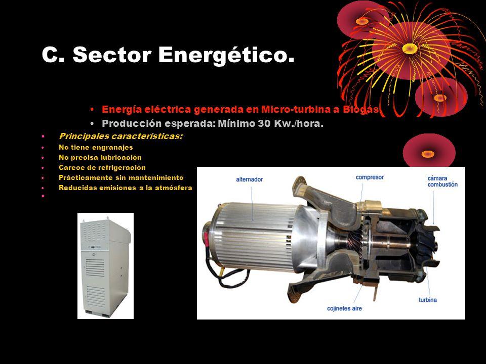 C. Sector Energético. Energía eléctrica generada en Micro-turbina a Biogás. Producción esperada: Mínimo 30 Kw./hora.