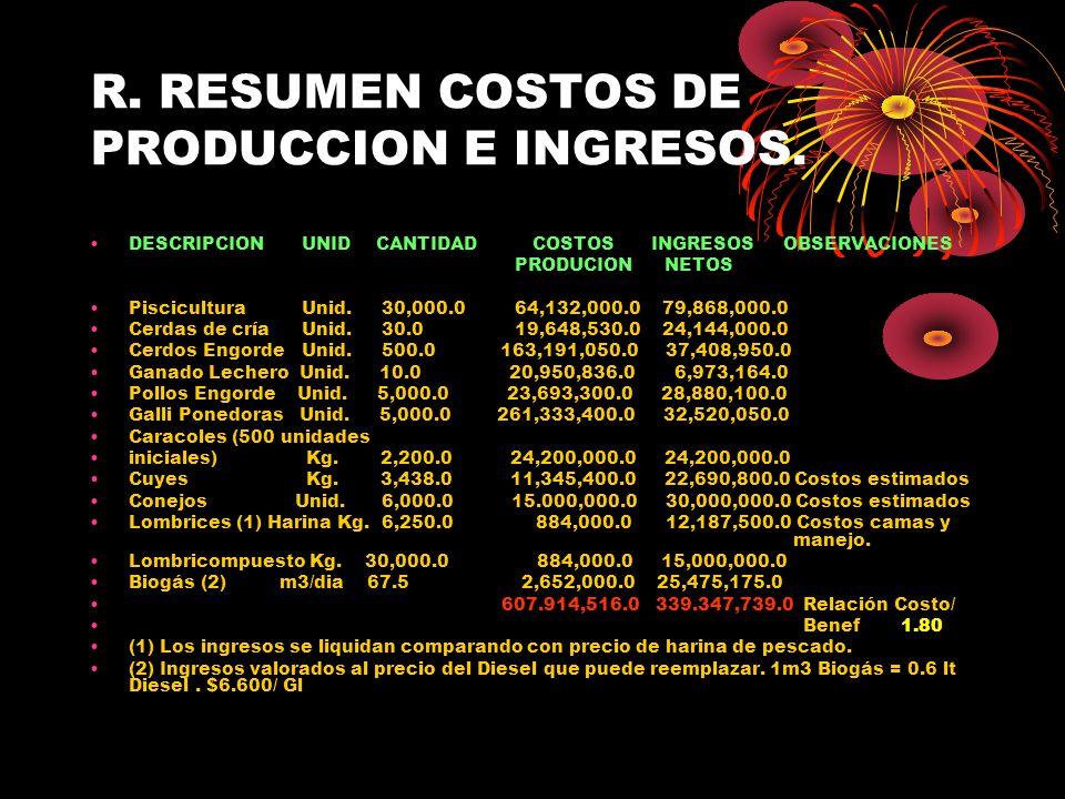 R. RESUMEN COSTOS DE PRODUCCION E INGRESOS.