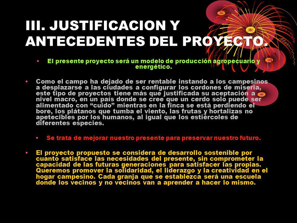 III. JUSTIFICACION Y ANTECEDENTES DEL PROYECTO.