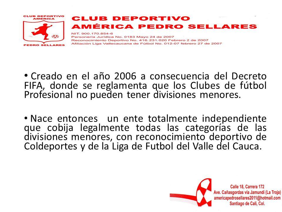 Creado en el año 2006 a consecuencia del Decreto FIFA, donde se reglamenta que los Clubes de fútbol Profesional no pueden tener divisiones menores.